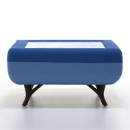 Blue Huddle Table contract furniture with tree branch legs